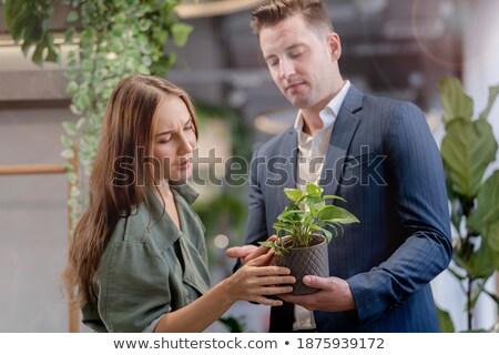 Mosolyog irodai dolgozó lány tart cserepes növény üzlet Stock fotó © vlad_star