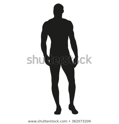Kas siluet genç vücut uygunluk erkekler Stok fotoğraf © aetb