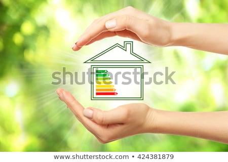 Energy Efficiency in the Home Stock photo © 4designersart