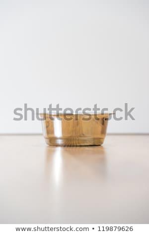 Empty cats steel bowl on wooden floor. Lot of copyspace. Crisis  Stock photo © HASLOO
