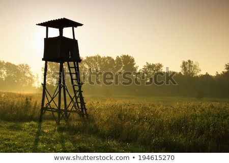 hunting lookout tower forest Stock photo © fotoaloja