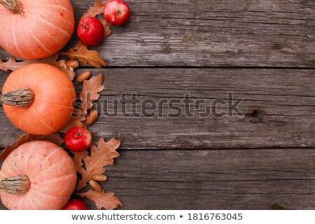 Piros almák öreg rongyos fából készült fa Stock fotó © TarikVision