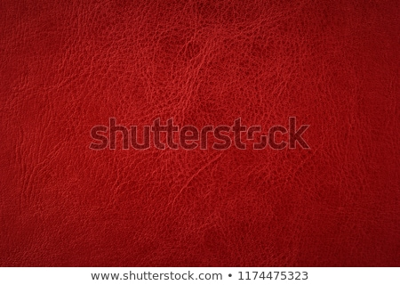 Rosso pelle texture primo piano abstract mucca Foto d'archivio © homydesign