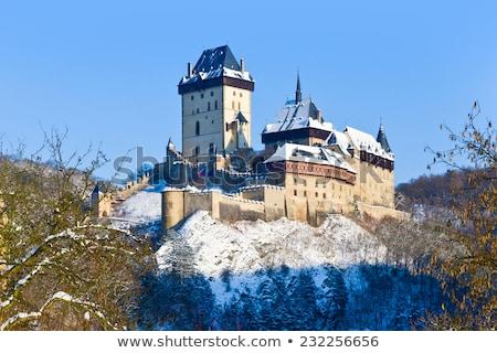 kış · kale · görmek · manzara · seyahat · ülke - stok fotoğraf © tannjuska