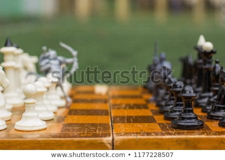 準備 戰鬥 不怕 棋 集 常設 商業照片 © Fisher