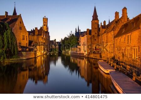 Swans on waterways, Bruges, Belgium Stock photo © jenbray