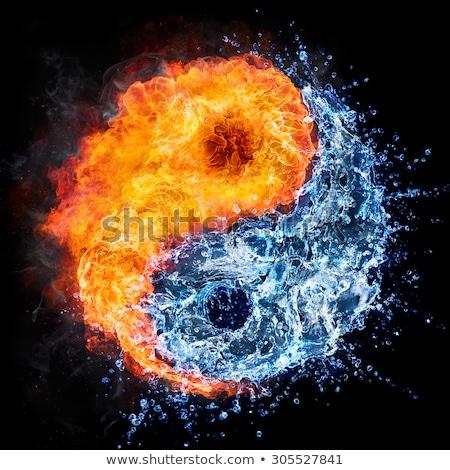 Yin yang forró hideg illusztráció szimbólum absztrakt Stock fotó © lutjo1953
