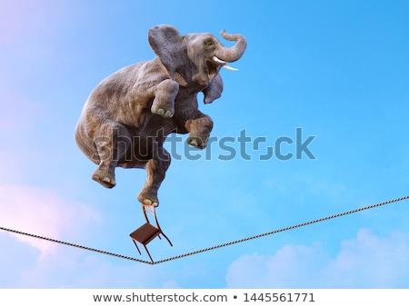 Niebezpieczny równowagi człowiek biznesu taniec kamień dachu Zdjęcia stock © elwynn