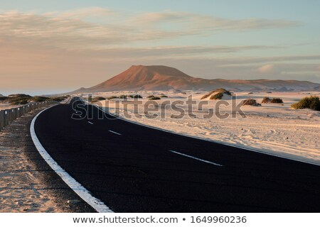 natural park of corralejo in fuerteventura spain stock photo © nito