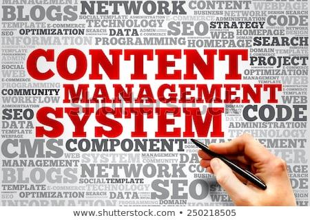 word cloud - web service Stock photo © master_art
