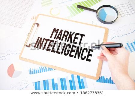 Insight Blue Marker Stock photo © ivelin