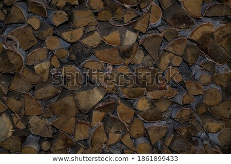 a lot of the firewood lying at a wall stock photo © mcherevan