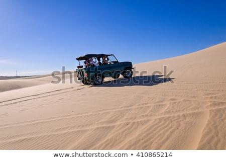 White sand dunes with blue skies, Mui Ne, Vietnam Stock photo © fisfra