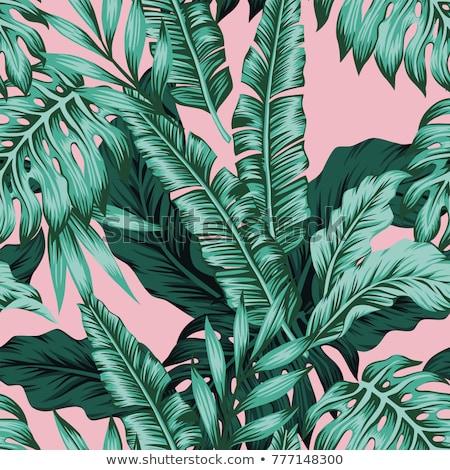minta · zöld · trópusi · levelek · nyár · vízfesték - stock fotó © elmiko