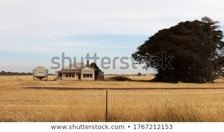 Abandoned farm in rural Australia Stock photo © lovleah