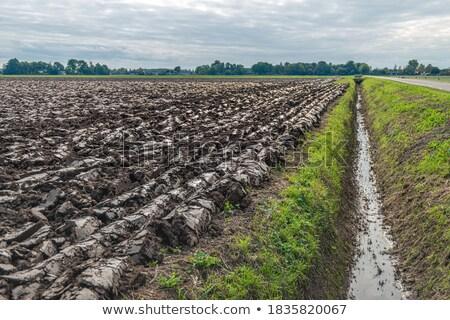 Mezőgazdaság eke agyag föld nézőpont sötét Stock fotó © lunamarina