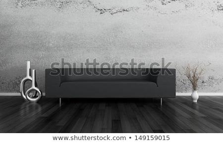 Foto stock: Sala · de · estar · treinador · preto · sofá · prata · mobiliário
