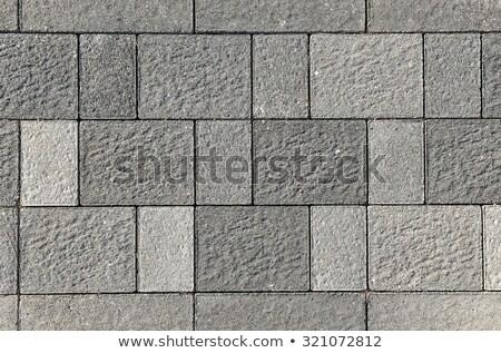 Naadloos textuur rechthoekig grijs effect marmer Stockfoto © tashatuvango