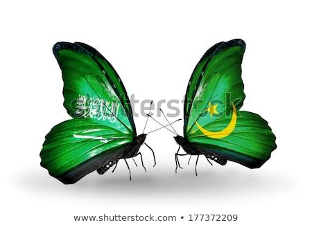 Saudi Arabia and Mauritania Flags  Stock photo © Istanbul2009