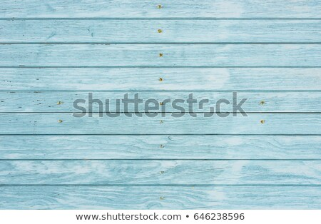 Pallido blu legno superficie texture Foto d'archivio © stevanovicigor