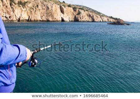 Canne à pêche coucher du soleil plage nature été bleu Photo stock © morrbyte