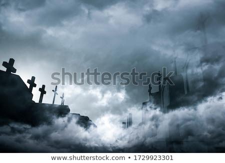 Scene of graveyard at night Stock photo © bluering