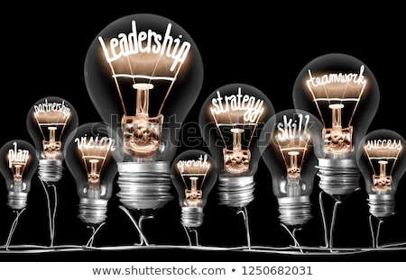 Leadership Vision Stock photo © Lightsource