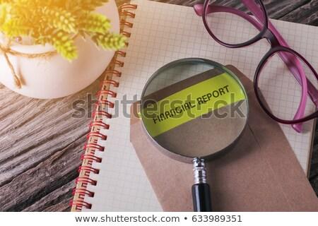 Card File with Financial Report. 3D Rendering. Stock photo © tashatuvango