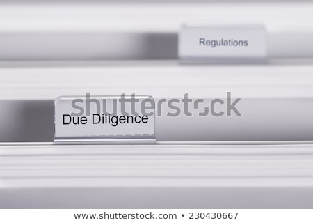 Due Diligence Concept on File Label. Stock photo © tashatuvango