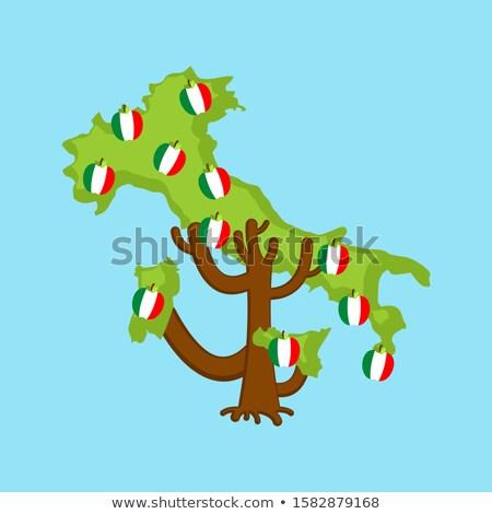 Stok fotoğraf: Vatansever · elma · ağacı · İtalya · harita · elma · bayrak