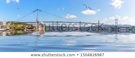 Cami köprü İstanbul gündoğumu Türkiye gökyüzü Stok fotoğraf © Givaga
