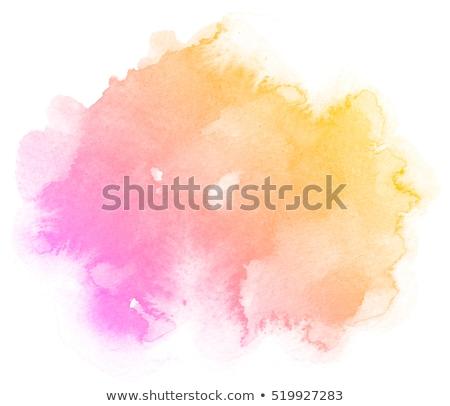 оранжевый белый акварель иллюстрация изолированный краской Сток-фото © ConceptCafe