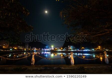 Viêt-Nam chat île cityscape vue style Photo stock © romitasromala