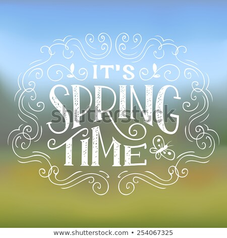 It's spring time vector illustration with beautiful colorful flower on yellow background. Floral des Stock photo © articular