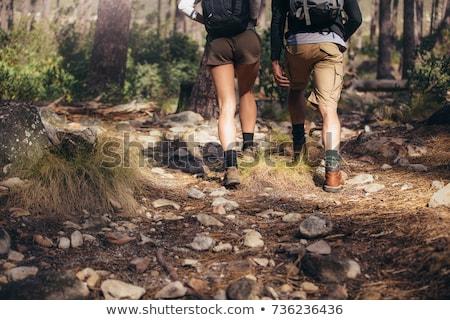 Casal caminhadas ao ar livre viajar turismo Foto stock © dolgachov