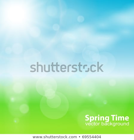 eco green leaf circle abstract background element Stock photo © blaskorizov