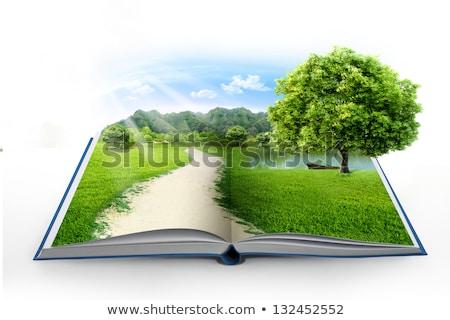paysage · livre · ouvert · arbre · arbre · vert · oiseaux · écologie - photo stock © colematt