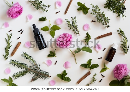 selection of essential oils and herbs on a white background stock photo © madeleine_steinbach