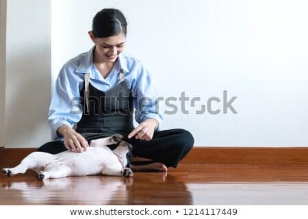 домохозяйка иллюстрация собака девушки Сток-фото © colematt