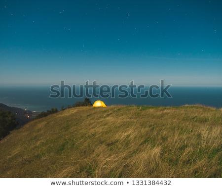 beautiful view of big sur coast in california Stock photo © dolgachov