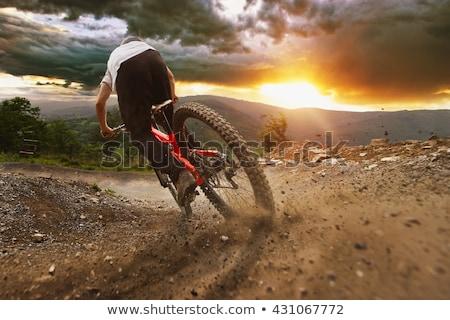 weiblichen · Berg · Biker · heraus · Schwerpunkt · Landschaft - stock foto © lightpoet