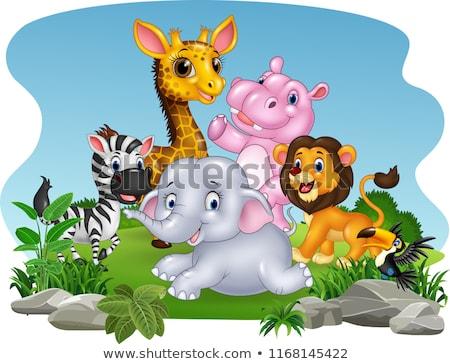 african wild animals cartoon characters group stock photo © izakowski