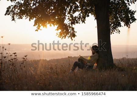 женщину чтение книга большой дерево осень Сток-фото © robuart