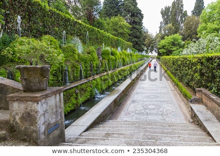 Famous Italian Renaissance Villa D'este fountain and garden in T Stock photo © Zhukow