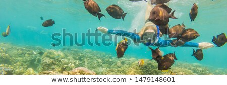 BANNER, LONG FORMAT Happy woman in snorkeling mask dive underwater with tropical fishes in coral ree Stock photo © galitskaya