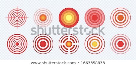 Cél cél kör fájdalom osztályzat vektor Stock fotó © pikepicture