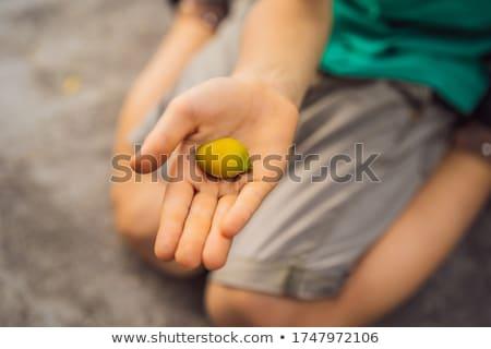 Micro giallo mango ragazzi mano natura Foto d'archivio © galitskaya