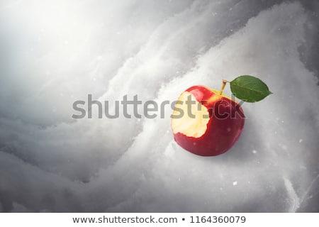 ストックフォト: 凍結 · 妖精 · リンゴ · ファンタジー · 肖像 · 美しい