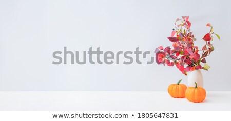 収穫 装飾 いい わら 袋 カボチャ ストックフォト © Hasenonkel