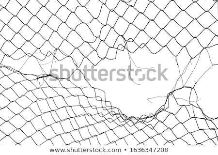 ragged netting Stock photo © sirylok